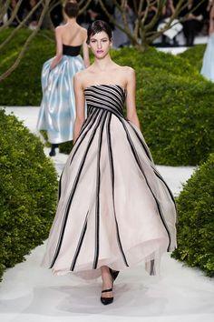 Christian Dior Haute Couture Spring 2013  By Nicoleta Parascan.
