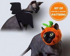 HALLOWEEN SET OF 2 Patterns: Knitted Cat pumpkin hat and | Etsy Crochet Bat, Crochet Gifts, Cat Costumes, Halloween Costumes, Knitting Patterns, Crochet Patterns, Pumpkin Hat, Knitted Cat, Photo Pattern