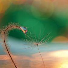 Shine on, my friend by Sandra McCabe