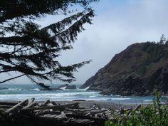 Oregon Coast.......the most beautiful coastline in the U.S.