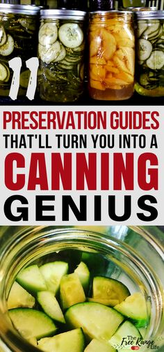 for beginners book 11 Food Preservation Guides That'll Turn You into a Canning Genius! Home Canning for Beginners: Check out these food preservation guides and learn all about how to can food at home! Canning Tips, Home Canning, Canning Recipes, Easy Canning, Canning Food Preservation, Preserving Food, Survival Food, Survival Prepping, Survival Skills