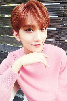 Seventeen || Joshua