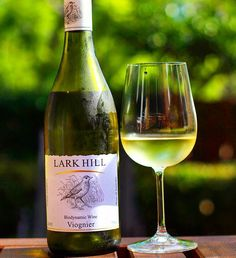 WineChatty only recently discovered @LarkHillWine but this winery has rapidly become a favourite of ours.  Lark Hill Viognier 2015 Apricot and honey on the nose Floral honey and fruit but with a balanced acidity that finishes dry.  It then leaves you with a slight ginger afterburn.  Delicate and layered with a delayed kick at the end.  The pregnant pause before the band pumps the chorus into overdrive.  #wine #winelover #winetime #wineo #winenight #wineporn #winetasting #winestagram…
