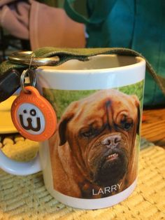We love this tribute: Thinking of Larry and how he would have proudly worn a WagAware Charm. Let's help more dogs like Larry!