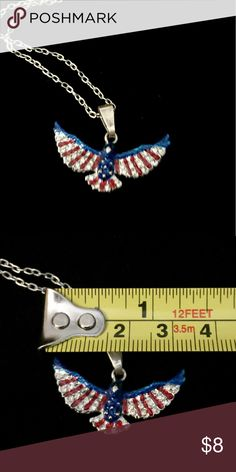 American eagle pendant American eagle pendant necklace, silver tone, NWOT, never worn, approx 1.5 inch width Jewelry Necklaces