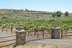 Just thought I'd share a little information on a new Hagerman Valley treasure .... Thousand Springs Winery Bed and Breakfast ... 18852 Highway 30, Hagerman, Idaho 83332, 208/352-0150 ~ Check it out!!!