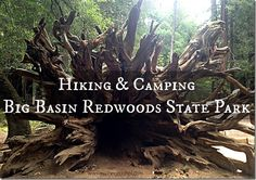 Big Basin Redwoods State Park, hiking & Camping