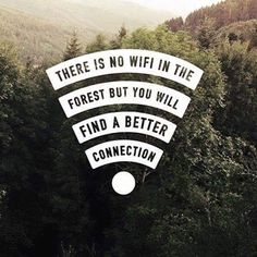 There is no wifi in the forest but you will find a better connection.