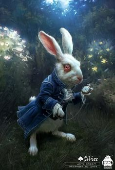 White Rabbit - The late one ;)