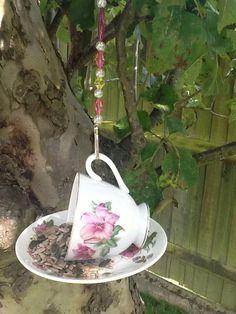Tea cup bird feeder :-)