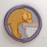 The Other boy scout badges.