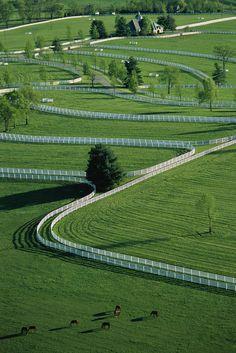 Donamire Farms Lexington KY