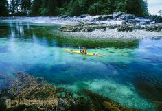 Kayaker in Bunsby Island group. Vancouver Island, Bunsby Island group, British Columbia, Canada. by Gary Luhm