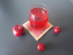 Cranberry Apple Citrus Cocktail
