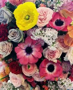 Bright and colorful flowers