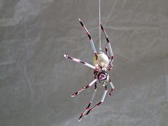 Pearl Spider