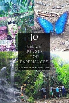 Belize jungle top ten featuring the Cockscomb Basin Wildlife Sanctuary and Jaguar Reserve