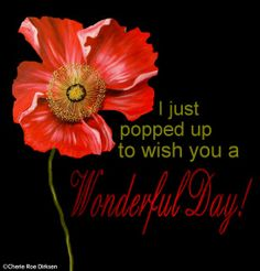 Wonderful Day #free #ecard by Cherie Roe Dirksen (click on pic for all the free ecards) #poppy