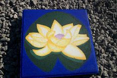 Yellow Lotus on Stepping Stone