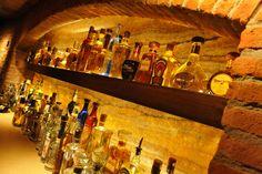 De bekende tequila merken zijn ook in de Nederlandse slijterijen te vinden: Sauza, Jose Cuervo reposado en Olmeca. Bekende zijn o.a. Don Julio, Porfidio, El Jimador en 1800. Of in Breda heb je o.a. Aha Toro, Amate, Casa Noble, Casa Vieja, Don Anastacio, Esperanto, Espolon, Gran Centenario, Herradura, Oro Azul, Patron, Porfidio, Sauza Tres Generaciones, 1800, Jose Cuervo de las Familias.