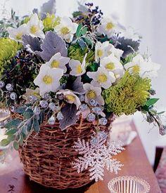 In diesem Strauß werden Outdoor-Christrosen mit Eukalyptus und Silberblättern zu perfekten Indoor-Stars.