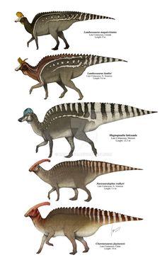 Lambeosaurine Hadrosaurids Plate2 by Kana-hebi
