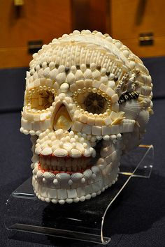 Seashell skull. Part of the Shell Show at the Academy of Natural Sciences in Philadelphia, PA , October, 2011.