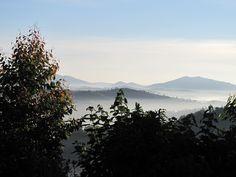 Misty morning in Rwanda