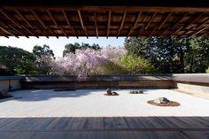 龍安寺 石庭 Ryouanji, Kyoto