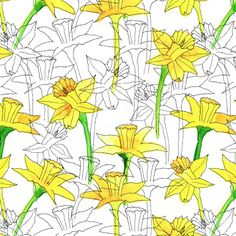 daffodils. patterns. colors.