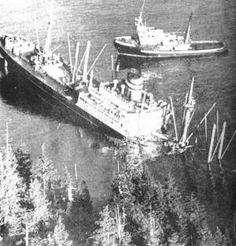 3 januari 1968 Het vrachtschip ms 'Schiedyk' (1949) van de Holland-Amerika Lijn, http://koopvaardij.blogspot.nl/2016/01/3-januari-1968.html