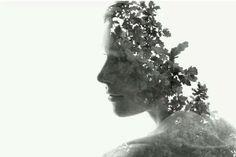 Christopher Relander  Soft, delicate. Very good image by Christoffer Relander.