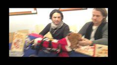 When Oscar met Ylvis! Wheelchair Dog meets Ylvis Ylvis ~ Brothers Bård and Vegard Ylvisåker ♥