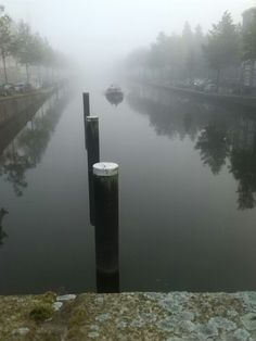 Misty morning tranquility