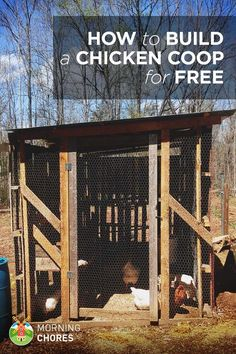 If you want to raise chickens, the coop is your biggest start-up investment. Here's a free step by step plan for your to build a free chicken coop.