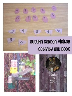 Squirrel Unit Study for preschoolers.
