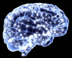 Decision-Making in the Brain Mapped