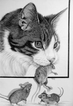Cat with mouse in Graphite by on DeviantArt Art Sketches, Art Drawings, Animals Black And White, Pencil Shading, Life Drawing, Drawing Tips, Drawing Ideas, Cat Mouse, Graphite Drawings