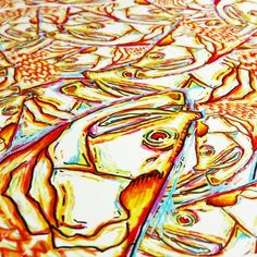 181 Best Saltwater Images Goldfish Red Fish Set Of