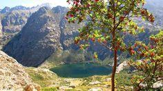 Lac de Melo (1711m) | Corse