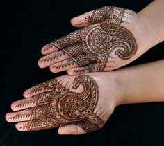 Beautiful Henna Hand Art (7)