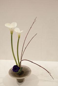 The beauty of simplicity Ikebana Flower Arrangement, Ikebana Arrangements, Beautiful Flower Arrangements, Floral Arrangements, Beautiful Flowers, Deco Floral, Art Floral, Floral Design, Arreglos Ikebana