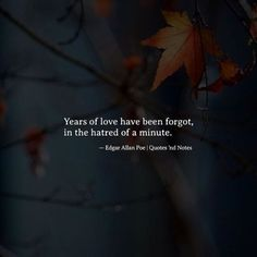 Years of love have been forgot in the hatred of a minute, Edgar Allan Poe. Fitting for my thoughts today. Poe Quotes, Dark Quotes, Words Quotes, Sayings, Qoutes, Random Quotes, Great Quotes, Quotes To Live By, Inspirational Quotes