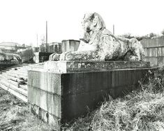 Description: A sculpture of an Egyptian sphinx on the terraces at Crystal Palace. Date of Execution: 1974 Medium: Photograph Ref No: Collection: LCC Photograph Collection Find more images of Crystal Palace on our image library. Vintage London, Old London, South London, London History, British History, Crystal Palace, Hyde Park, Old Pictures, Old Photos