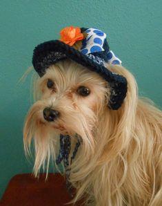 Blue Dog Sun Hat Fancy Crocheted Cat or Dog Sunhat by Fancihorse