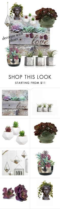 """Planters & Plants"" by stina715 on Polyvore featuring interior, interiors, interior design, home, home decor, interior decorating, Roost, plants and planters"