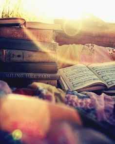 a blanket, an arm full of books with a light summer brunch in the sunlight .. what could be more relaxing?