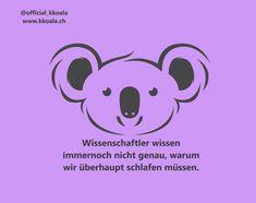 Sag nein zu Plastik mit den neuen KKoala Trinkhalmen! www.kkoala.ch -- #switzerland #love #zurich #schweiz #facts #fakten #schlaf #kissen #koala #koalafacts #swiss #sleep #lifestyle #lebensstil #ootd #säugetier #mensch #schlaffakten #nackenkissen #reisen #sleepfacts #wwf #instagood #photooftheday #beautiful #cute #happy #spring #pillow #otter Blog, Ootd, Character, Age, Sleep, Swimming, Workout, Animals, Sunday