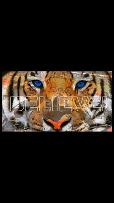 Believe in Auburn and love it! War Eagle! ~ Check this out too RollTideWarEagle.com ~ sports stories that inform and entertain, plus #collegefootball rules tutorial. Check out our blog and let us know what you think. #Auburn #WarEagle