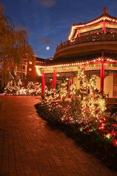 christmas in pagoda norfolk virginia - Christmas Lights Virginia Beach
